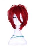Kuroko's Basketball Seijuro Akashi Short Red Cosplay Wig Rw156