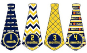 Monthly Baby Boy Basketball Tie Stickers Monthly Tie Stickers NBA Monthly Stickers Indiana Pacers Monthly Tie Stickers Monthly Sports Stickers