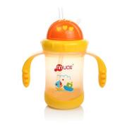 Mumlove Leak Proof Straw Feeding Bottle with Handles Training Cup