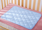 TTBOO Waterproof Resuable Baby Changing Pad Liners Blue