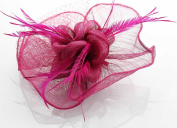 Fuchsia Feather Design Floral Mesh Fascinator with PreciousBags Dust Bag