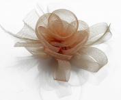Nude Mesh Flower and Feather Detail Fascinator with PreciousBags Dust Bag