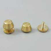 Bluemoona 20 Pcs - Solid Brass Screw Head Screw Back Feet 10MMX6MM for Purse Handbag Nailheads Spike Spot Stud