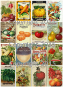 Victorian Vintage Seed Pack Vegetable Collection Collage Sheet