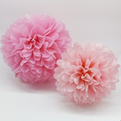 Pom Poms - 15pcs Tissue Paper Flowers,2 Different Colours,2 Sizes, Tissue Paper Pom Poms, Mother's Day decoration, Wedding Decor, Party Decor, Tissue Paper Pink, Tissue Paper Flowers Kit, Wedding, For Baby Shower -Pink and Light Pink