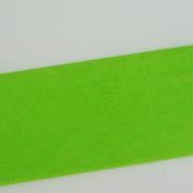 Crepe Paper Light Green 10 Art Project Tissue Paper Flower Crepe Paper