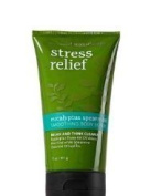 Bath & Body Works Stress Relief Eucalyptus Spearmint Smoothing Body Scrub 330ml by Chom