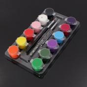 Pro Mix 12 Colours Pure DIY Gel Acrylic UV Builder Nail Art Tips Decor Kit Set