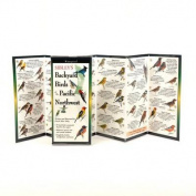 Sibley's Backyard Birds of Pacific Northwest