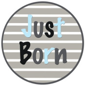 Mumsy Goose Baby Boy Just Born Sticker
