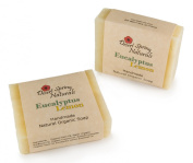 All Natural Organic Handmade Eucalyptus Lemon Soap Bar by Desert Spring Naturals - Made with Organic Olive Oil