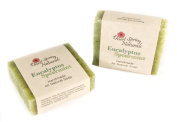 All Natural Handmade Eucalyptus Spearmint Soap Bar by Desert Spring Naturals - Made with Essential Oils