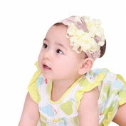 Lowpricenice Cute Babys Girls Photography Headbands