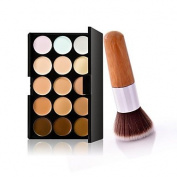 QINF 1Pc Exquisite Natural Bamboo Handle Foundation Brush and 15 Colours Concealer