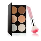 QINF M0243 6 Colours Powder Cake and 1PCS Pink Handle Blush Brush