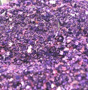 Purple Shine Glitter Medley - 30ml Jar