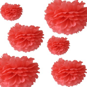 CheckMineOut 12Pcs Mixed 3Sizes Coral Tissue Paper Pom Poms Decorative Flowers Wedding Centrepieces New Year Birthday Bridal Shower Party Decoration Hanging Favours