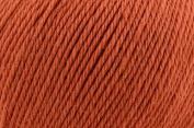 Universal Yarn Deluxe Worsted Superwash 100gr #703 Terra Cotta