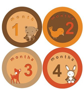 Woodland Forest Monthly Baby Boy Stickers