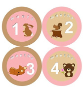 Woodland Forest Monthly Baby Girl Stickers Animal Girl Month Stickers