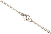 Flat Cable Chain Necklace 2.3mm Stainless Steel With Lobster Claw Clasp Sold Per 20Inch/pack (3packs bundle), SAVE $2
