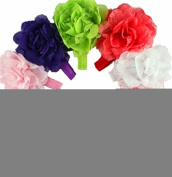 KingWinX Lace Flower Style Baby Girl's Headband, Pack of 10 pcs