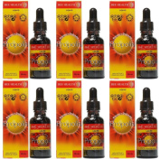 (6 PACK) - Bee Health - Propolis Liquid | 30ml | 6 PACK BUNDLE