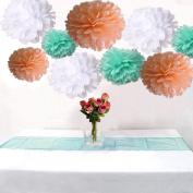 18PCS White Peach Mint Tissue Paper Flower Pom Poms Pompoms Wedding Birthday Anniversary Party Christmas Girls Room Decoration