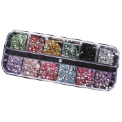 3000pcs 2mm Round Rhinestons 12 Colours Hard Case Nail Art Tips Acrylic UV Gel