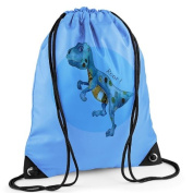 Boys Swim Bag, Boys Gym Bag, Blue PE Bag, Dinosaur Bag