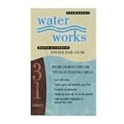 Water Works #31 Auburn