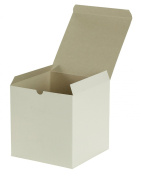 Premier Retail Packaging 10 Count White Gloss Gift Box, 7 x 18cm x 18cm
