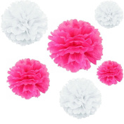 Joinwin® 12PCS Mixed Sizes White Hot pink Tissue Paper Flower Pom Poms Pompoms Wedding Birthday Party Nursery Decoration