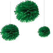 Joinwin® 12PCS Mixed Sizes Dark Green Tissue Paper Flower Pom Poms Pompoms Wedding Birthday Party Nursery Decoration