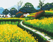 Greek Art Paintworks Paint Colour By Number,Spring Canola Flower,30cm by 41cm