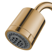 Kingston Brass KX8612 Concord Two Function Showerhead, 9.7cm , Polished Brass
