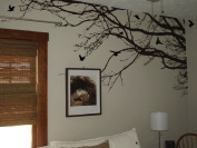 Innovative Stencils 1130 100 mblack mirror 250cm Wide X 110cm HighTree Top Branches Wall Decal Vinyl Sticker