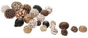 Decorative Set of 25 Natural Balls25 Balls