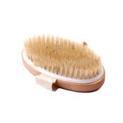 SEEKO Oval Sessile Bristle Bath Brush TFA659