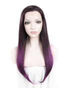 60cm Purple High Density Heat Resistan Synthetic Lace Front Wig Long Straight Wig