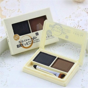 QINF 2 Colours Perfect Waterproof Eyebrow Powder