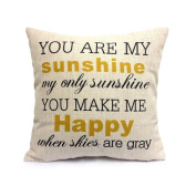 Decorative Inspirational Quotes Pillow Cover Personalised Custom Cotton Linen Pillowcase-you are my sunshine