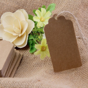 Sealike 100 Pcs Brown Rectangle Kraft Paper Tag with Jute Twines Great for Weding Party Decor with Stylus