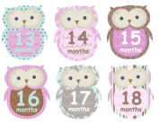 13-24 months Monthly Baby Girl Stickers Plaid Owls UNCUT Argyle Damask Stripes Dots Girl Owls Second Year