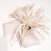 Cream coloured Large looped net and feather fascinator on a forked clip and brooch pin
