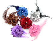 BONAMART ® 6 pcs Woman Lady Girl Brooch Corsage Hair Clips Accessories Feather Flower For Wedding Party