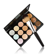 Fashion Base New 15 Colours Contour Face Cream Makeup Concealer Palette + Powder Brush
