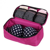Small Packing Cubes Travel Case Underwear Storage Boxes Bra Organiser Bag