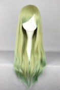 SMILE 70cm Long Multi Colour Straight Anime Cosplay Costume Wig