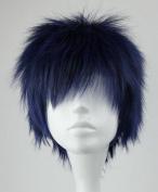 SMILE Blue Black Cosplay Costume Wigs Kuroko no Basuke-Aomine Daiki Handsome Man Anime Wig